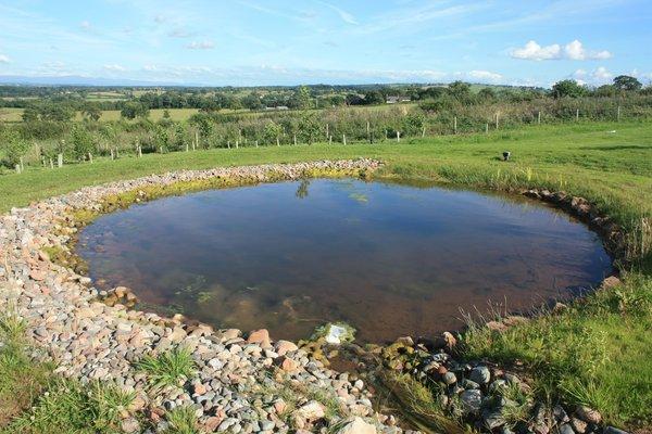 """""""Artificial pond"""" © Rev. Colin Brough / www.sxc.hu"""